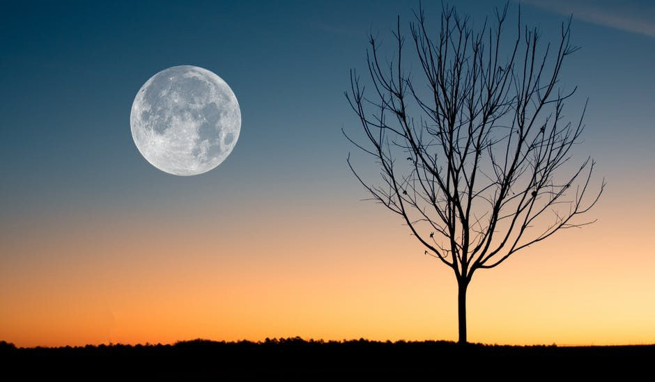 What is a Beaver's Moon? The Full Moon's Name & Meaning