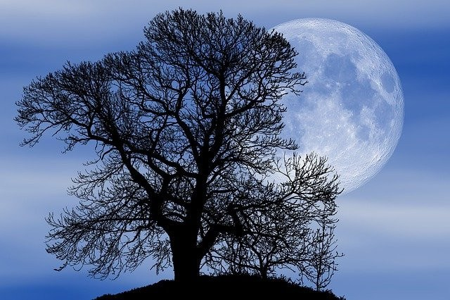 What is a Worm Moon? The March Full Moon's Name & Meaning