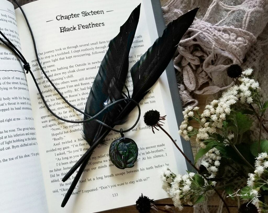 Obsidian raven pendant on Chapter Sixteen: Black Feathers from the Chronicles of Avilésor: War of the Realms Book 1 A Fallen Hero by Sara A. Noë