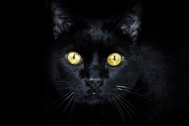 Why is Friday the 13th So Unlucky? The Truth Behind the Superstition