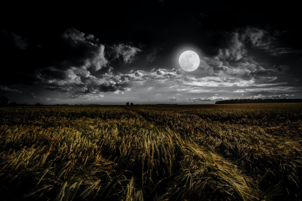 What is a Corn Moon? The August Full Moon's Name & Meaning